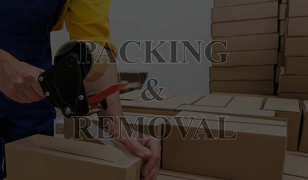 Portline Shipping & Logistic - packing and removal